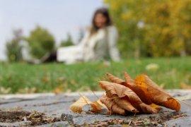 Bayburt'ta kartpostallık sonbahar!