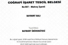Bayburt Üniversitesi,
