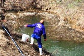 Bayburt Belediyesi Larvalarla Mücadelesi Hız Kesmeden Devam Ediyor