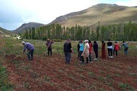 Bayburt'ta Yaşlılar ve Çocuklar Bir Araya Gelip Toprağa Hayat Verdi