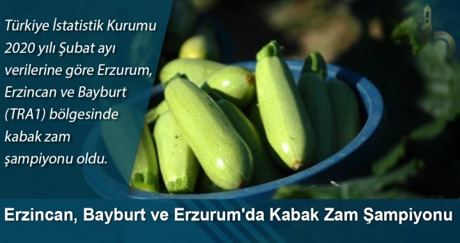 Erzincan, Bayburt ve Erzurum'da Kabak Zam Şampiyonu