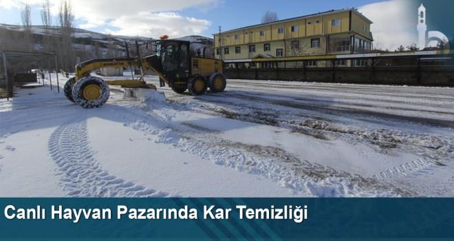 Canlı hayvan pazarında kar temizliği