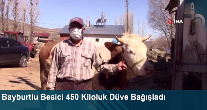 Bayburtlu Besici 'Milli Dayanışma Kampanyası'na 450 Kiloluk Düve Bağışladı