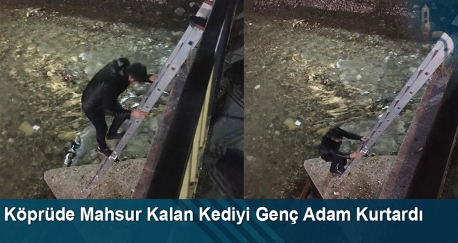 Köprüde mahsur kalan kediyi genç adam kurtardı