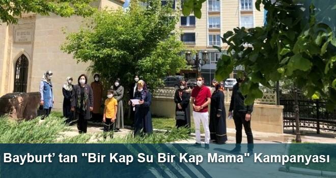 "Bayburt'tan ""Bir Kap Su Bir Kap Mama"" Kampanyası"