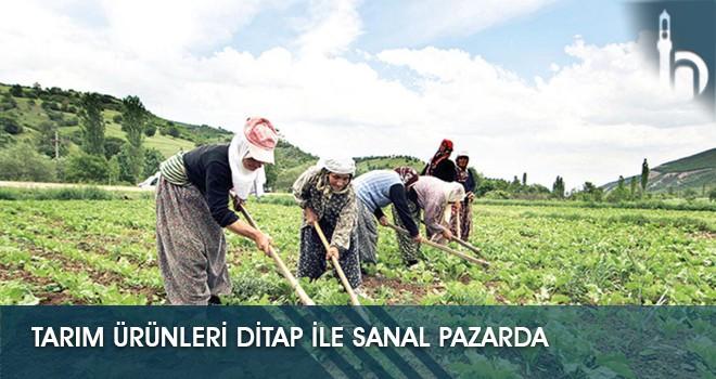 Tarım Ürünleri DİTAP ile Sanal Pazarda