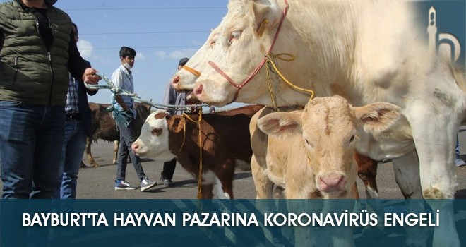 Bayburt'ta Hayvan Pazarına Koronavirüs Engeli