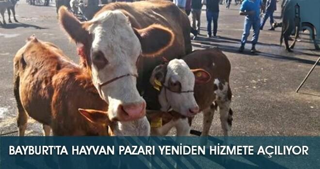 Bayburt'ta Hayvan Pazarı Yeniden Hizmete Açılıyor