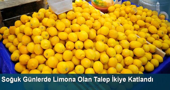 Soğuk günlerde limona olan talep ikiye katlandı