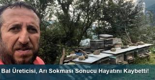 Bal Üreticisi, Arı Sokması Sonucu Hayatını Kaybetti!