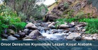 Orsor Deresi'nin Kıyısındaki Lezzet: Koşat Alabalık